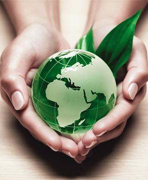 Declaração Ambiental